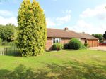 Thumbnail for sale in Heath Road, East Bergholt, Colchester