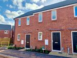 Thumbnail to rent in Barley Road, Cranbrook, Exeter