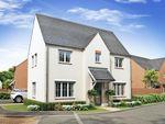 "Thumbnail to rent in ""Morpeth"" at Wheatley Close, Banbury"