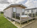 Thumbnail to rent in Padstow Holiday Park, Padstow, Cornwall