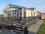 Thumbnail for sale in Ashdown Park (Ref 5780), Minskip Road, Boroughbridge, North Yorkshire