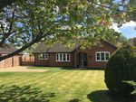 Thumbnail for sale in Common Road, Bressingham, Diss, Norfolk