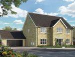 "Thumbnail to rent in ""The Samville_Brick"" at Bury Water Lane, Newport, Saffron Walden"
