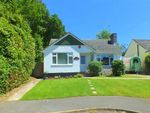 Thumbnail to rent in Bransgore Gardens, Bransgore, Hampshire