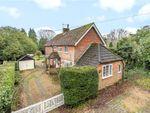 Thumbnail for sale in Danes Road, Awbridge, Romsey, Hampshire