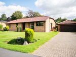 Thumbnail to rent in Woodlands Park, Blairgowrie, Perthshire