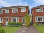 Thumbnail for sale in Rivermead Close, Romsey