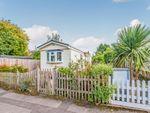 Thumbnail to rent in Poplar Park, Long Wittenham, Abingdon