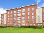 Thumbnail to rent in Little Hackets, Havant, Hampshire