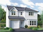 "Thumbnail for sale in ""Fletcher"" at Bellenden Grove, Dunblane"