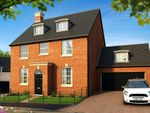 "Thumbnail to rent in ""The Henrietta "" at Pitt Road, Winchester"