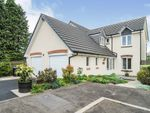 Thumbnail for sale in Beech Court, Parkgate, Dumfries, Dumfries And Galloway