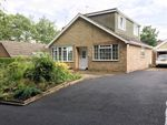 Thumbnail for sale in Grimsby Road, Binbrook, Lincolnshire