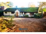 Thumbnail to rent in Fen Walk, Woodbridge