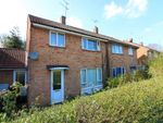 Thumbnail to rent in Redhall Drive, Hatfield