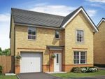 "Thumbnail to rent in ""Ripon"" at Ponds Court Business, Genesis Way, Consett"