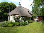 Thumbnail for sale in Pond Lane, Worthing, West Sussex