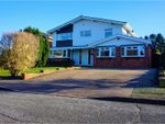 Thumbnail for sale in Conifer Drive, Culverstone Green, Meopham