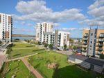 Thumbnail to rent in Ocean Drive, Gillingham
