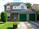 Thumbnail to rent in Broadstone, Marton