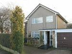 Thumbnail for sale in Scarteen Close, Hunters Hill, Guisborough