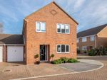 Thumbnail to rent in Sheron Close, Deal