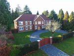 Thumbnail to rent in Pippins, Grays Lane, Ashtead