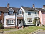 Thumbnail for sale in Barlavington Way, Midhurst, West Sussex