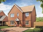 "Thumbnail to rent in ""The Corfe"" at Hyton Drive, Deal"