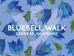 Thumbnail to rent in Bluebell Walk, Denmead, Waterlooville