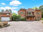 Thumbnail for sale in Hollow Dene, Chilworth, Hampshire