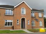 Thumbnail to rent in Downview Drive, Belfast