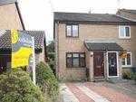 Thumbnail to rent in Ryehaugh, Ponteland, Newcastle Upon Tyne