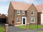 "Thumbnail to rent in ""Holden"" at Lowfield Road, Anlaby, Hull"