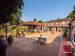 Thumbnail to rent in The Old Coach House, Eden Close, Thorpe St Andrew