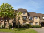 Thumbnail to rent in The Meadows, Sawbridgeworth