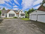 Thumbnail for sale in Stoneleigh Road, Gibbet Hill, Coventry