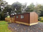 Thumbnail to rent in Sedburgh, Cumbria, United Kingdom