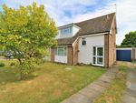 Thumbnail for sale in Holly Way, Elmstead, Colchester, Essex