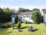 Thumbnail for sale in Southfields, Bridgerule, Holsworthy