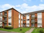Thumbnail to rent in Sandy Lodge Way, Northwood