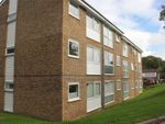 Thumbnail to rent in Tattershall Drive, Hemel Hempstead