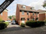 Thumbnail to rent in Castilian Way, Whiteley, Fareham