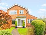 Thumbnail for sale in Thurley Close, Southoe, St. Neots