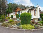 Thumbnail for sale in Clanna, Alvington, Lydney, Gloucestershire