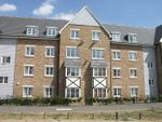 Thumbnail to rent in Richards Field, Chineham, Basingstoke