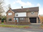 Thumbnail for sale in Irwin Drive, Horsham, West Sussex