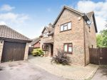 Thumbnail for sale in Great Leighs Way, Basildon, Essex