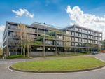 Thumbnail to rent in Belvedere, Basing View, Basingstoke