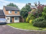 Thumbnail for sale in Langdale Close, Orpington, Kent